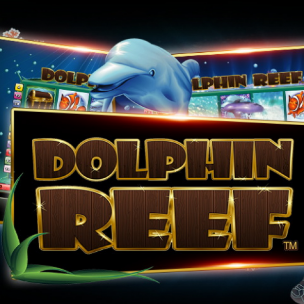 Dive with Dolphins in Dolphin Reef Slot Game in XE88 Online with Liveslot77