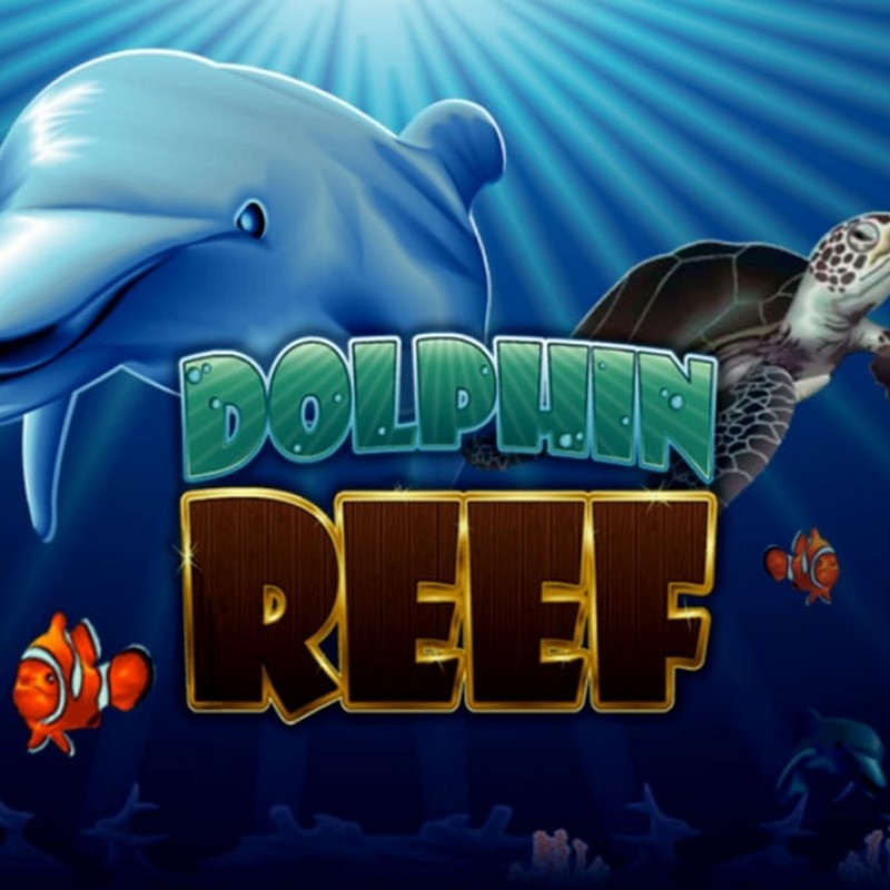 Dolphin Reef Slot : Overview & Tips To Win Slot in Mega888 apk 2021 @ Liveslot77