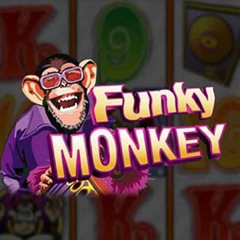Funky Monkey Slot : Review of Famous Slot in XE88 Casino 2020 @ Liveslot77